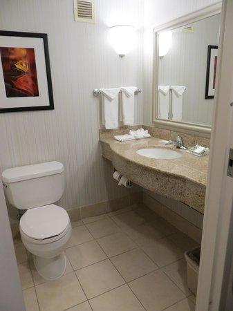 Hilton Garden Inn Virginia Beach Town Center : bathroom