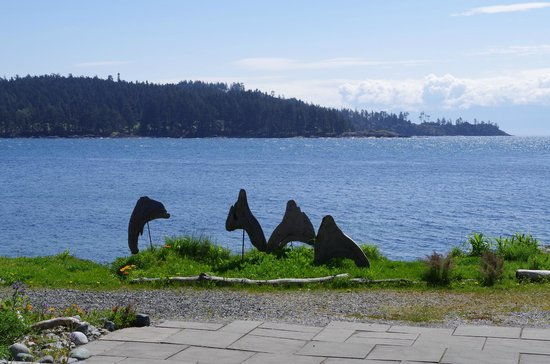 Sooke Harbour House Resort Hotel: Sooke Harbour from Sooke Harbour House