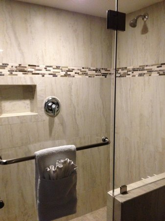 Coast Anabelle Hotel: Shower