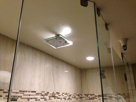 Coast Anabelle Hotel: Shower heads