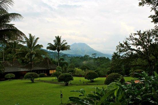 MesaStila Resort and Spa : garden