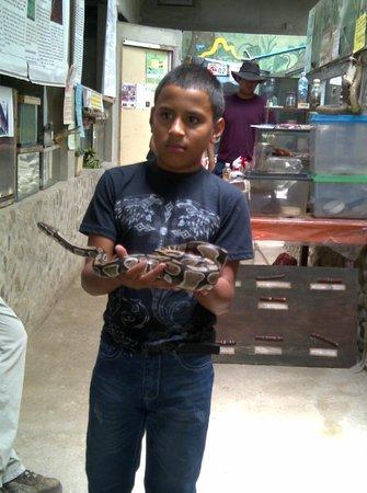 El Serpentario : reservada