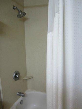 Holiday Inn Express BEST Shower Curtains