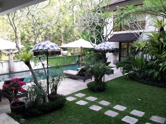 Villa Saraswati: Pool