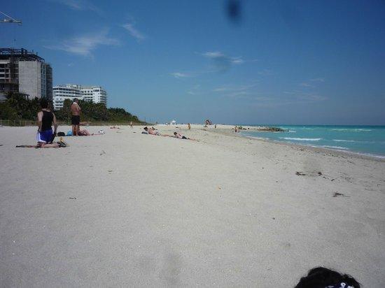 Freehand Miami: playa a la altura del hotel