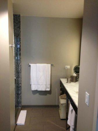 Ambassador Hotel Kansas City, Autograph Collection: Bathroom