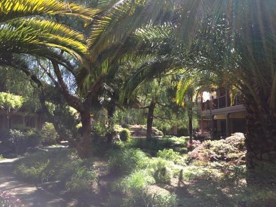 El Pueblo Inn: jardin paradisiaque