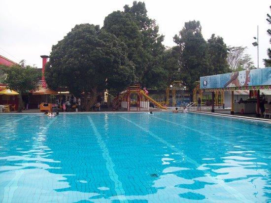 kolam renang foto rumah sosis bandung tripadvisor rh tripadvisor co id