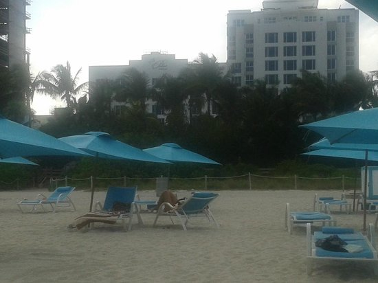 "The Palms Hotel & Spa: From the ""outside"" beach - view of the hotel"