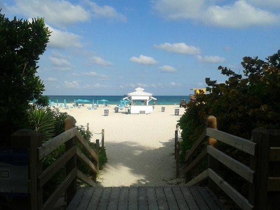 棕櫚樹Spa酒店照片