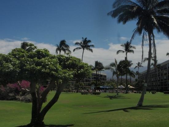 Maui Sunset Condos: view of condos from the beach.