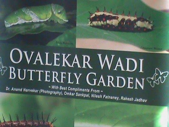 Butterfly park - Ovalekar Wadi: Butterfly Park