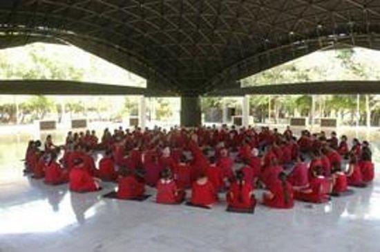 Osho Dham: Morning Meditation & Celebration