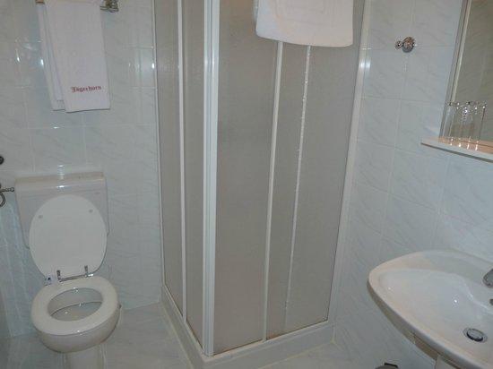 Hotel Jagerhorn: salle de bain