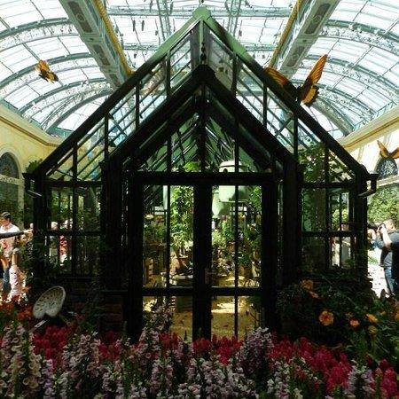 Attirant Bellagio Conservatory U0026 Botanical Garden: Butterfly House   Bellagio  Conservatory