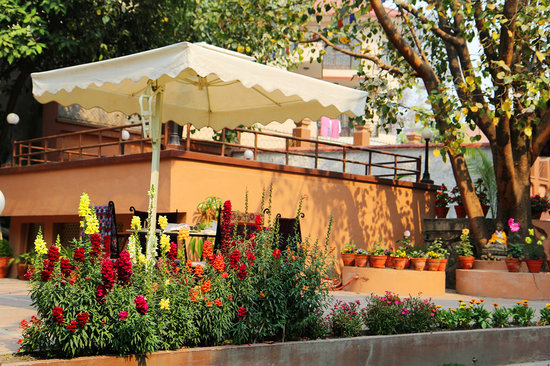 شامبالنج بوتيك هوتل: garden