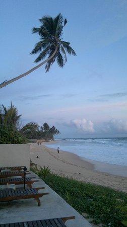Amanda Beach Villa : Красивая местность