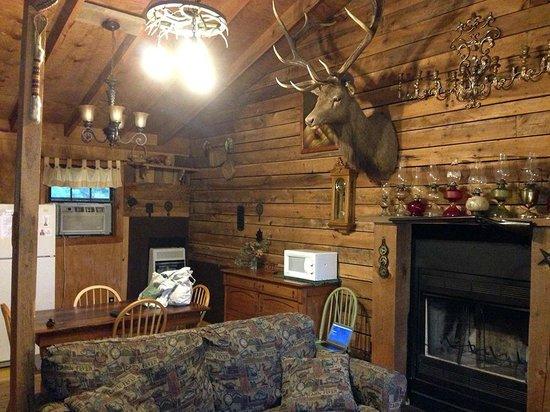 Panther Creek Resort: Panther Cabin