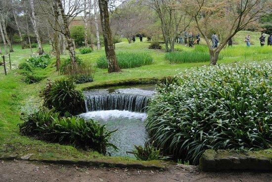 Giardini di ninfa foto di castello caetani sermoneta - I giardini di ninfa ...
