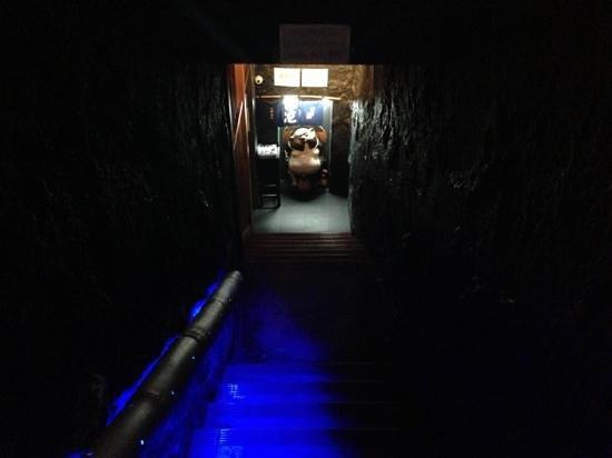 Tanuki Sushi & Sake Bar: entrance to the cave