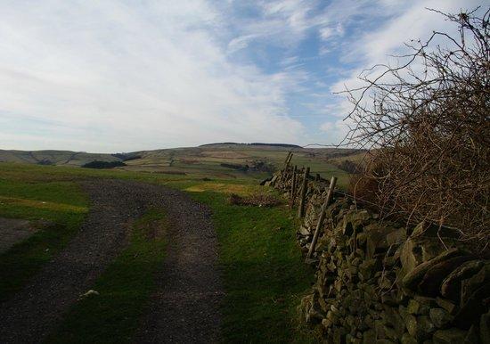 Common Barn Farm: Surrounding Views