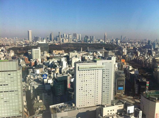 Cerulean Tower Tokyu Hotel: What a great city!