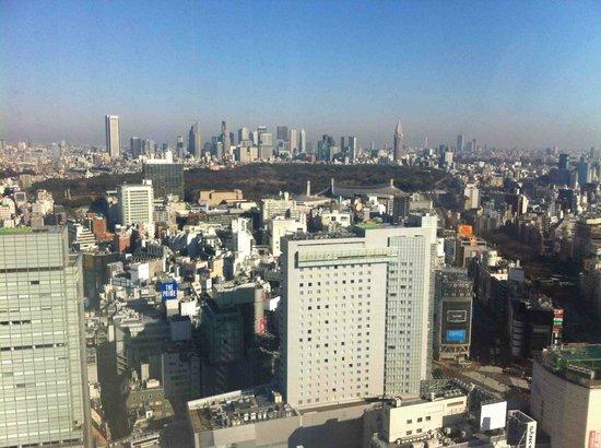 โรงแรมเซรูลีน ทาวเวอร์ โตเกียว: What a great city!
