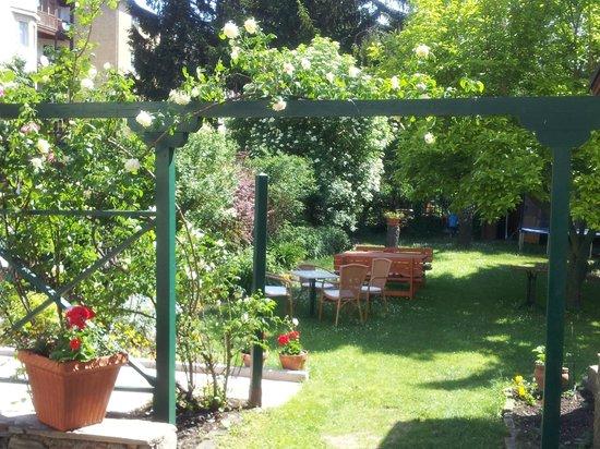 Hotel-Pension Alte-Mühle: Garten