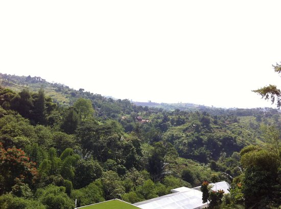 Padma Hotel Bandung: Stunning view from the lobby