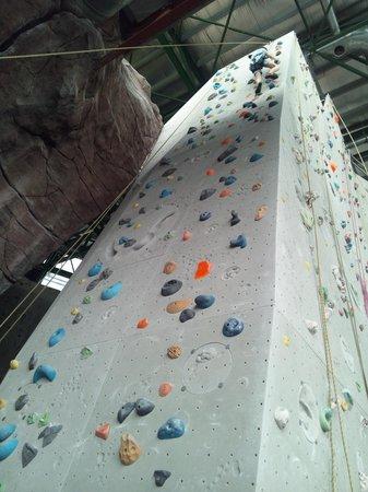 Camp5 : 垂直の壁に上りました