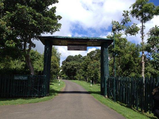 Serena Mountain Lodge: Main gate