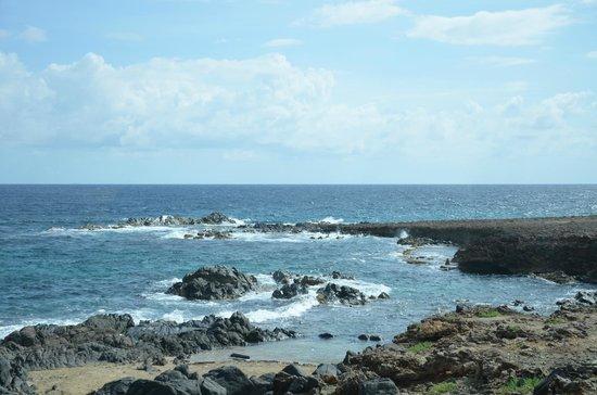 Bucuti & Tara Beach Resort Aruba: Aruba Landschaft