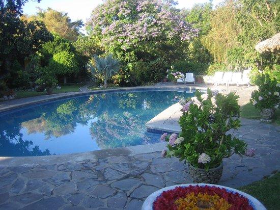 Hotel Cacique Inn: der schöne Pool
