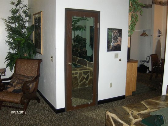 Hotel J Green Bay: Jungle room