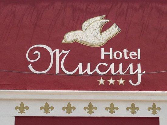 Hotel Mucuy: En Merida Yucatán.