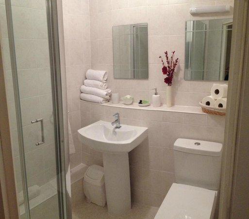 Wadham Guesthouse: En- Suite Shower room 5