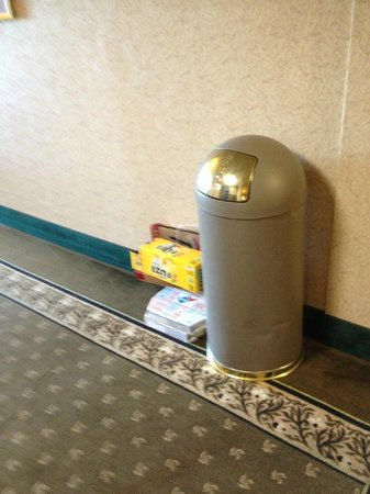 Wingate by Wyndham Columbus: Trash in the hall . It never moved the whole Time I was there. and there was a security camera p