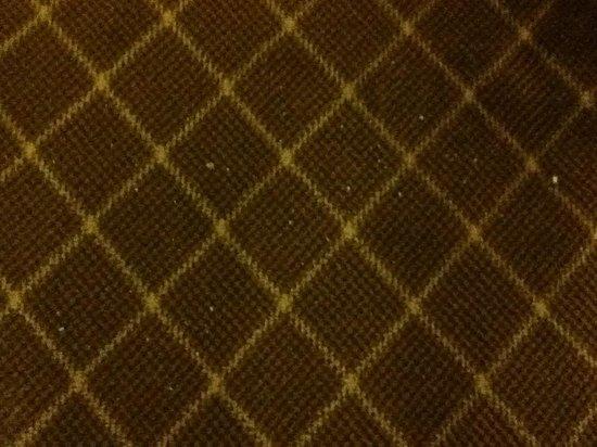 Clarion Hotel Detroit Metro Airport: Plaster