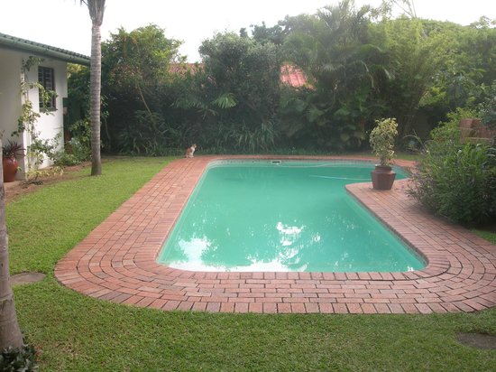 Igwalagwala Guest House: Garden and pool