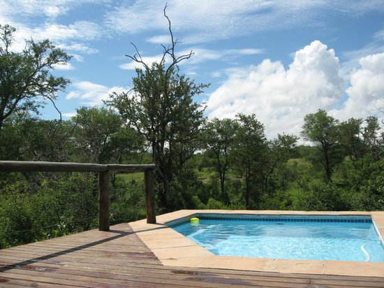 Idube Game Reserve: Idube - Private pool overlooking the bush
