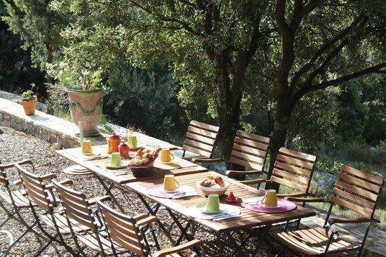 Mas de Courreges : petit dejeuner en terrasse