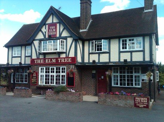 Photo of The Elm Tree