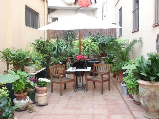 The Patio Barcelona: the patio
