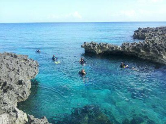 The Sun From Under Water Foto Di Living The Dream Divers Seven Mile Beach