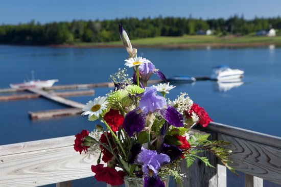 Inn at the Pier: beatiful flowers on the deck