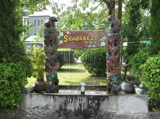 Sea Breeze Place: View from the road...