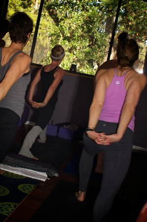 The Art of Massage and Yoga Therapy : The treehouse