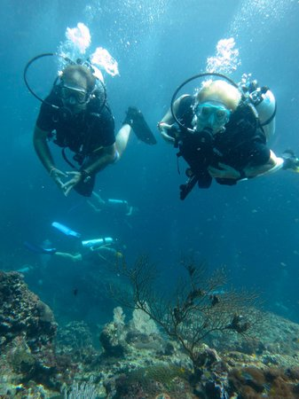Bangtao Dive Center: cruising alng