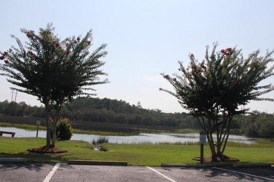 Creekside Lands Inn: Along the marsh