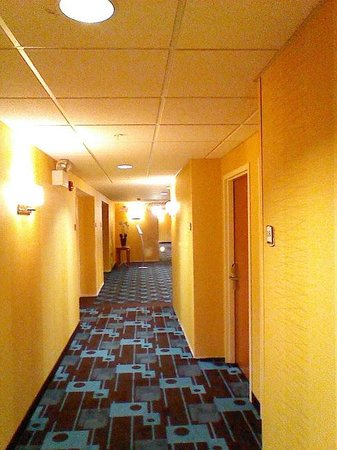 Fairfield Inn & Suites Williamsport: Bright yellow walls and Blue carpet ???
